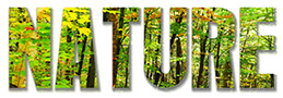Nature RFStock Photos